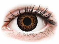 Hnedé kontaktné šošovky - nedioptrické - ColourVUE Eyelush Brown - nedioptrické (2šošovky)