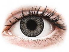 Farebné kontaktné šošovky - FreshLook ColorBlends Sterling Gray - nedioptrické (2 šošovky)