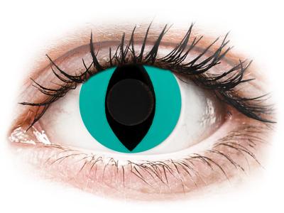 CRAZY LENS - Cat Eye Aqua - nedioptrické jednodenné (2 šošovky)