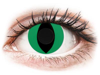 CRAZY LENS - Cat Eye Green - nedioptrické jednodenné (2 šošovky)