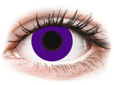 CRAZY LENS - Solid Violet - nedioptrické jednodenné (2 šošovky)