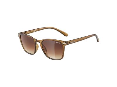 Slnečné okuliare Alpina Yefe Brown Transparent/Brown Gradient