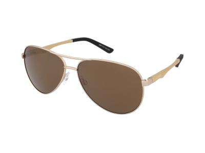 Slnečné okuliare Alpina A 107 Gold/Gold
