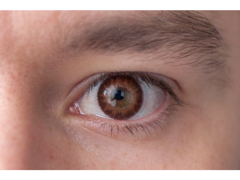 Brown na hnedom oku